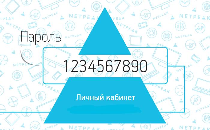 Персональная карта для доступа в личный кабинет клиента Netpeak